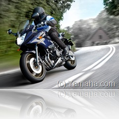 PoluxCriville_2509-yamaha-diversion-1