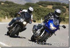 www.motociclismo.es_Nuevo carnet de conducir de moto en Motociclismo.es_nuevo-permiso-circulacion-3011091_g