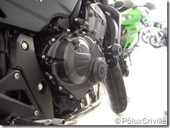 PoluxCriville_PreEntrega-HornetK9-Factory-Bike (9)