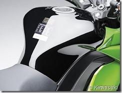 PoluxCriville_Kawasaki_Z1000SX(10)