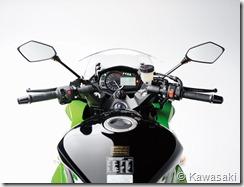 PoluxCriville_Kawasaki_Z1000SX(9)