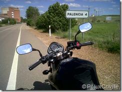 PoluxCriville-Pontevedra-Palencia-BT023-GT (1)