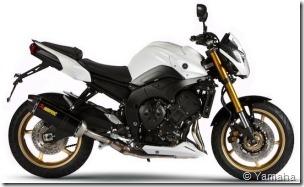 PoluxCriville-Yamaha-fz8-sport-n