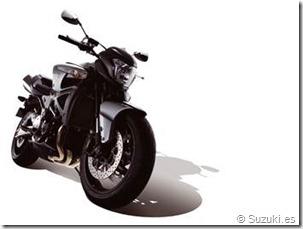 PoluxCriville_Suzuki-es-GSX1300-B-King_3