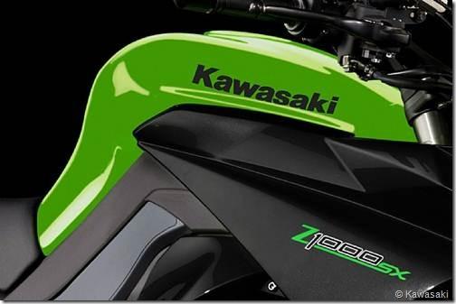PoluxCriville-Kawasaki-Z1000SX-2012-2