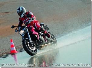 PoluxCriville-Solomoto-es-Dunlop-roadsmart-II-sport-touring