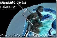 PoluxCriville_Dr_Dragon_hombro-doloroso-tendinitis-moto-2