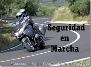 Video Seguridad en Marcha Poluxcriville-gustavo-cuervo-seguridad-en-marcha1