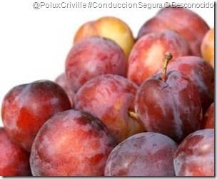 PoluxCriville-Desconocido-moto-conduccion-segura-fruta-verano-2