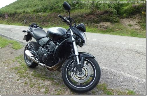 PoluxCriville-Stray-Bullet-Honda-Hornet-CB600F-K10