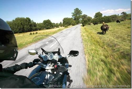 PoluxCriville-Formulamoto.es-Yamaha_FJR-conudccion-segura-moto-verano-casco