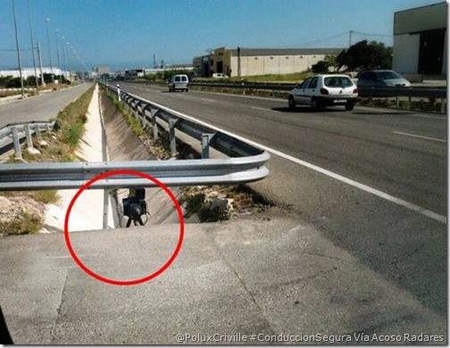 PoluxCriville-Via_EL ACOSO DE LOS RADARES Y LA DGT-radar-camuflado-multas-DGT