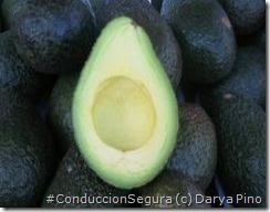 PoluxCriville-Consumer.es-Darya Pino-alimentos-concentracion-aguacate