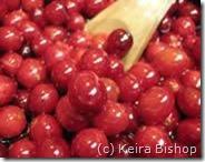 PoluxCriville-Consumer.es-Keira Bishop-alimentos-concentracion-arandano_rojo