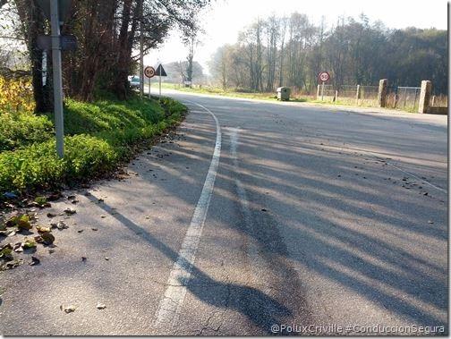 PoluxCriville-carreteras-estado-invierno-heladas-hojas