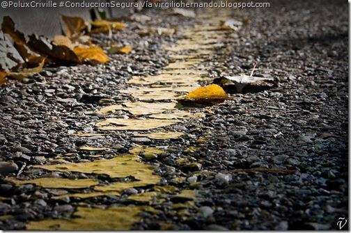 PoluxCriville-virgiliohernando.blogspot.com-moto-conduccion-segura-hojas-agua
