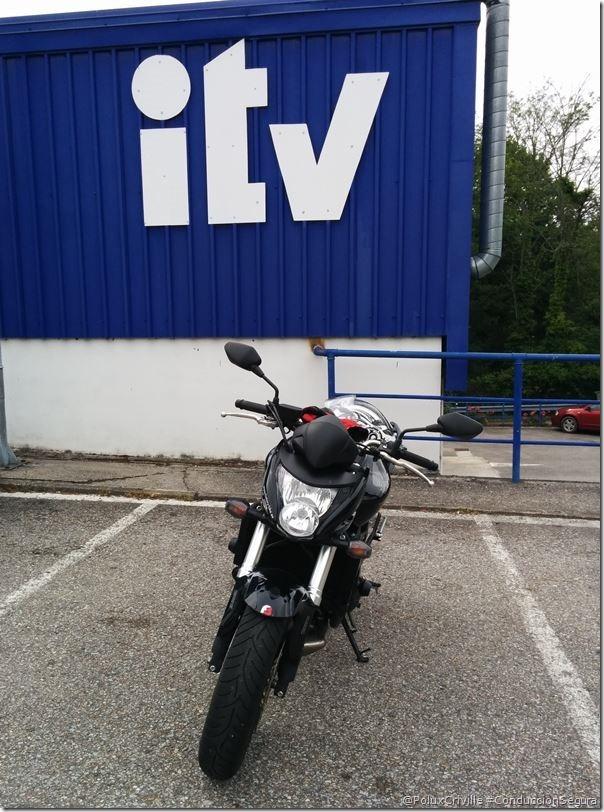 PoluxCriville-ITV-Hornet-4-años (2)
