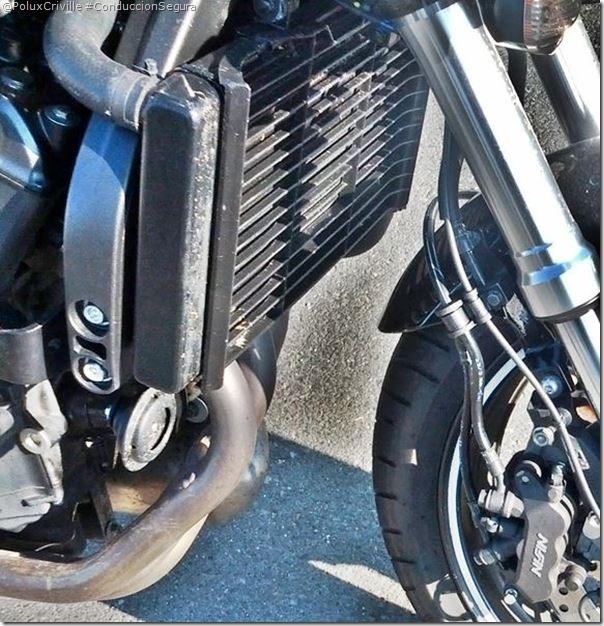 PoluxCriville-Hornet-limpieza-radiador-moto