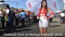 poluxcriville-paddock-girls-motegi-motogp-2016